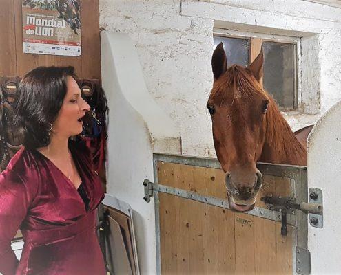 Concertino Equestre portrait